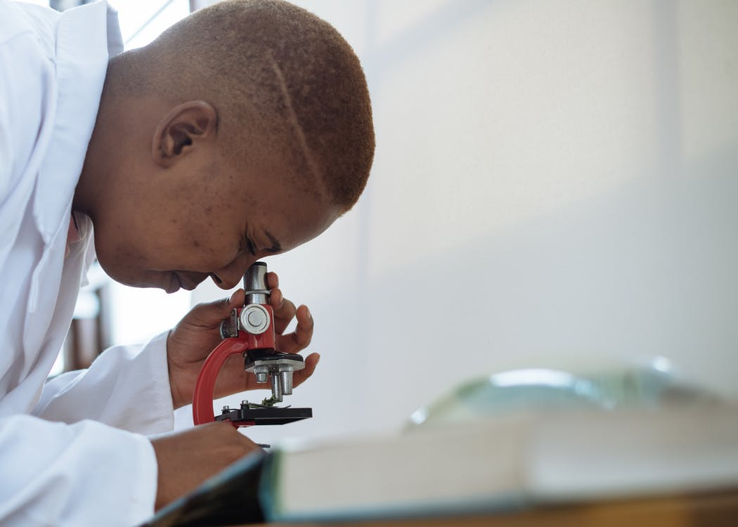 Focused biologist studying plant leaf with microscope