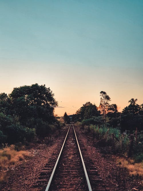 Free stock photo of forest, sunset, trail, train track