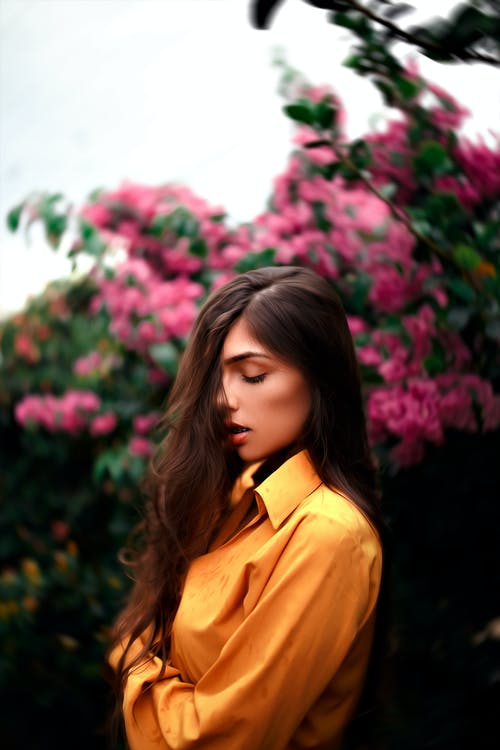 Foto profissional grátis de □ gentil, amarelo, ao ar livre, arbusto