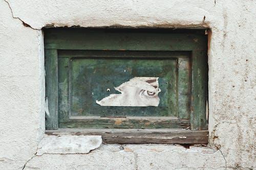 Photos gratuites de abandonné, allée, architecture, art