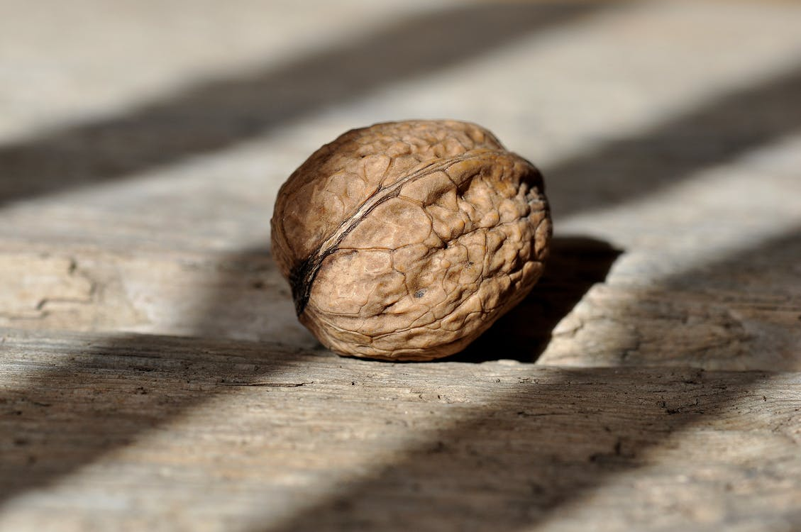 Brown Round Fruit on Grey Wooden Panel