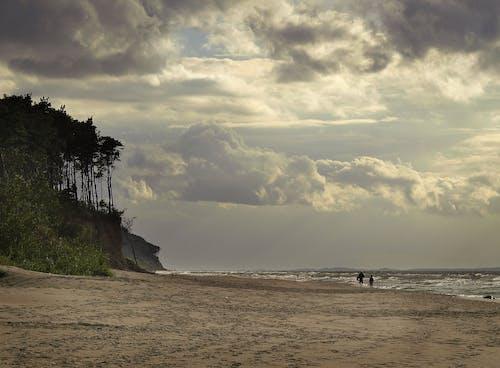 Free stock photo of long beach, sea