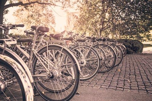 Foto d'estoc gratuïta de bicicletes, esport, estiu, transport