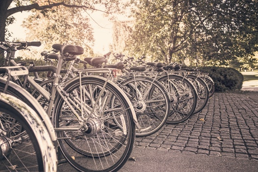 Free stock photo of summer, sport, bikes, bicycles