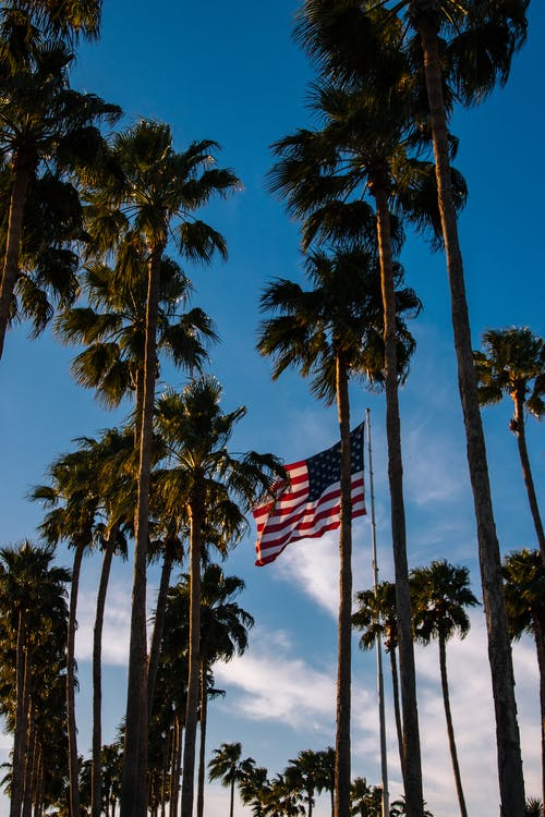 Free stock photo of america, American flag, blue sky, bright