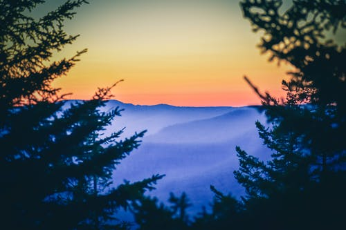 Sunset sky over mountains and pine forest