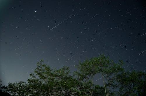 Free stock photo of night photography, night scene, night sky, shooting stars