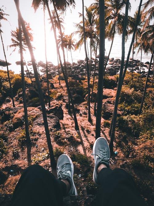 Nie Do Poznania Osoba Siedząca Na Skraju Wzgórza Nad Lasem Tropikalnym Nad Morzem