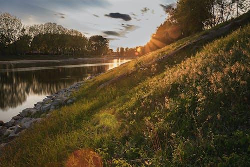 夜明け, 岩, 日没, 水の無料の写真素材