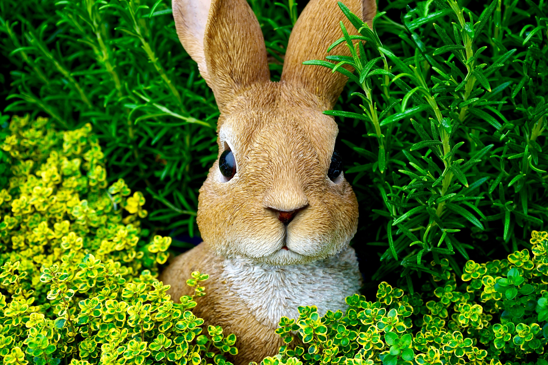 Brown Rabbit Figurine