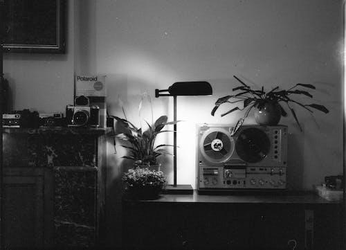 Free stock photo of analog, cupboard, music, polaroid