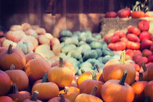 Selective Focus Photography of Piled Pumpkins