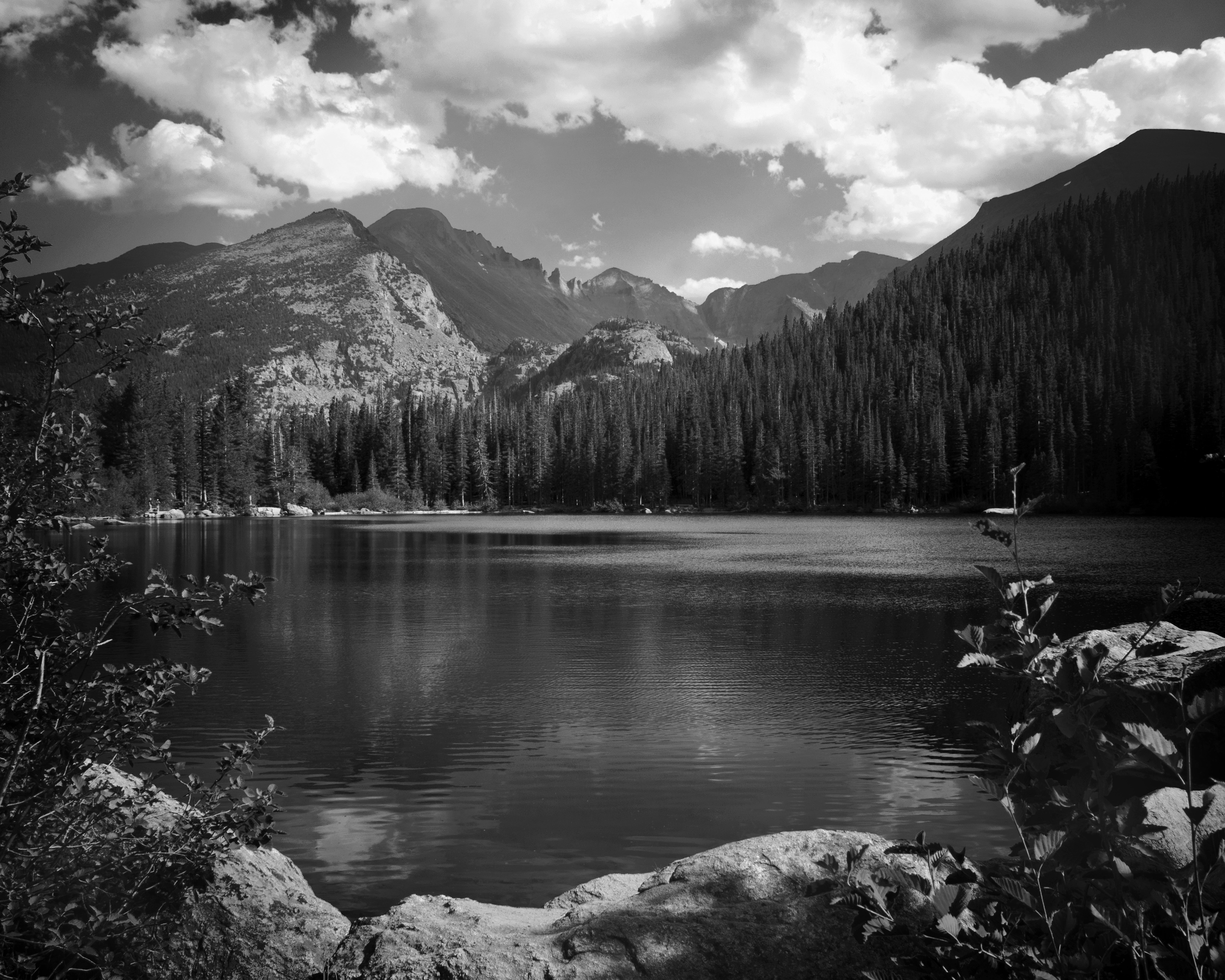 Grayscale Mountain Scenery