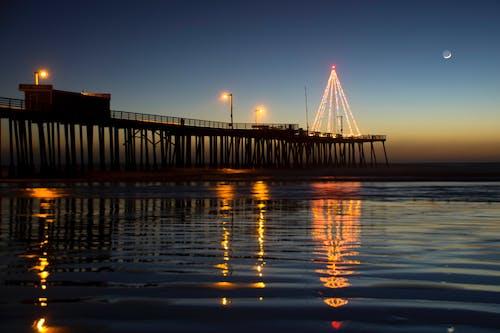 Photography of String Lights Tree on Bridge