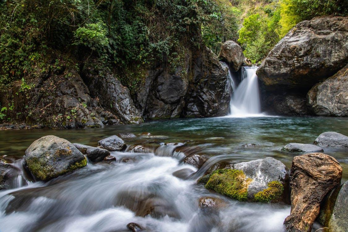 Cascadas De Agua En Medio Del Bosque