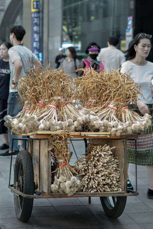 Free stock photo of busy street, garlic, garlic bread
