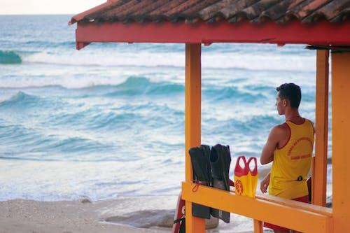 Základová fotografie zdarma na téma brazílie, dívání, florianopolis