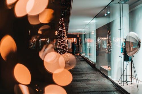 Showcase of light modern shop during Christmas holidays