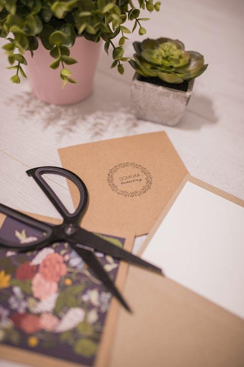 Kreative Einladungskarten Und Schere Auf Tisch Nahe Sukkulenten Gelegt