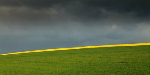 Free stock photo of canola fields, dark clouds, farm, green hills