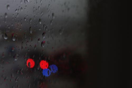 Безкоштовне стокове фото на тему «дощ, крапля, крапля води, Ліхтарі»
