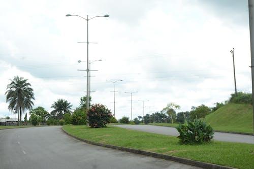 Free stock photo of calabar, green, road