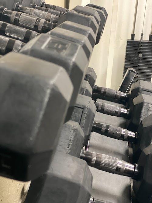 คลังภาพถ่ายฟรี ของ ข้ามพอดี, ห้องออกกำลังกาย, อุปกรณ์ออกกำลังกาย