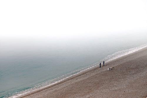 People Fishing on Beach