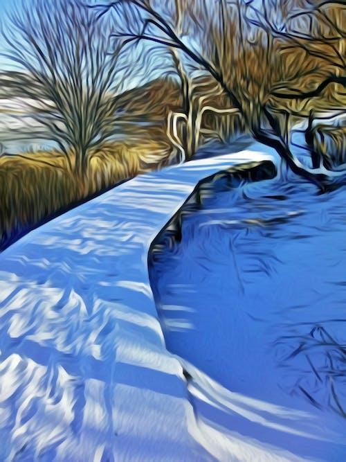 Free stock photo of path, snow, trees