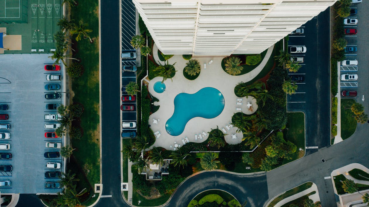Aerial View of Green Trees and Swimming Pool