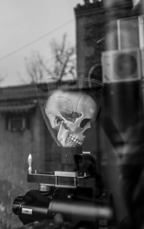 Human skull on professional equipment in laboratory