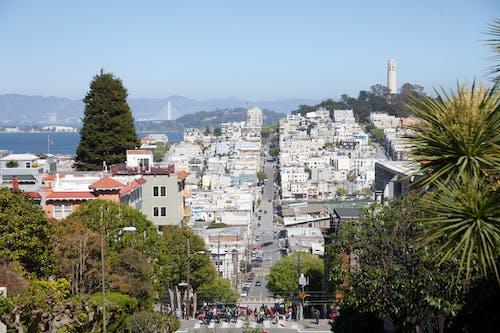 Free stock photo of city, san francisco