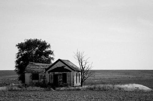 Ingyenes stockfotó elhagyatott, elhagyatott ház, emberek témában