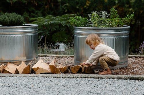 Photos gratuites de adorable, bois à brûler, centrales, eau