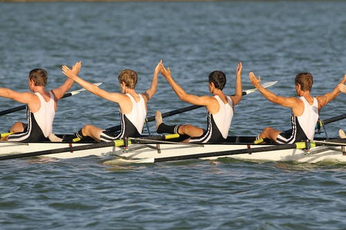 Free stock photo of rowing
