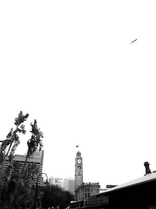 건축, 건축 양식, 높이, 대도시의 무료 스톡 사진