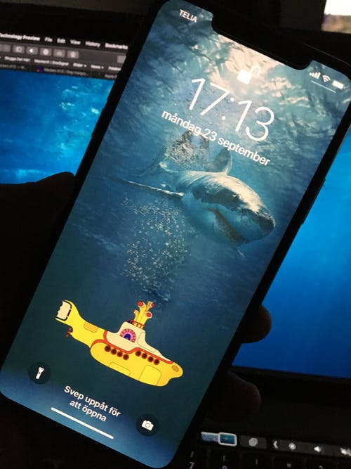 Free stock photo of iphone