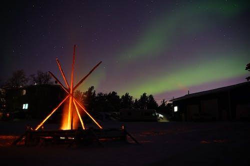 คลังภาพถ่ายฟรี ของ borealis