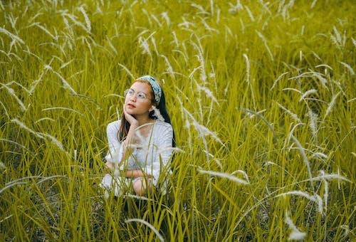 Fotos de stock gratuitas de campo de heno, campo de hierba, césped, hierba
