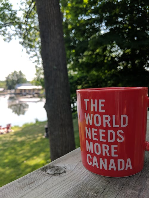 Free stock photo of canada, cottage, happy