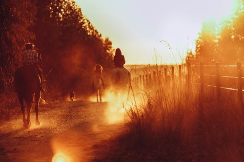 Man and Woman Walking on Riding Horses on Dirt Road