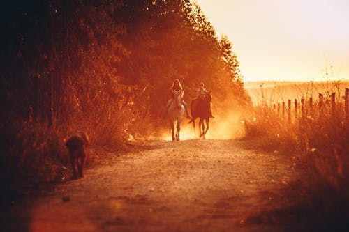 Kids riding horses in countryside in evening