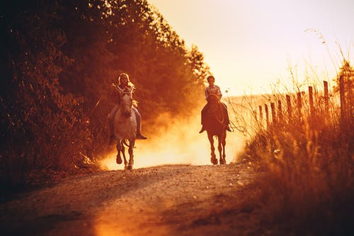 People Riding Horses During Sunset
