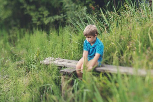 Boy in Blue Polo T-shirt Sitting on Brown Wooden Bench