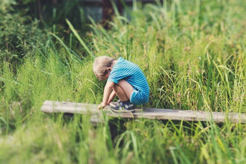 Boy in Blue Polo T-shirt and Blue Shorts Sitting on Wooden Bench
