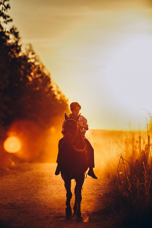 Boy Riding Horse During Sunset