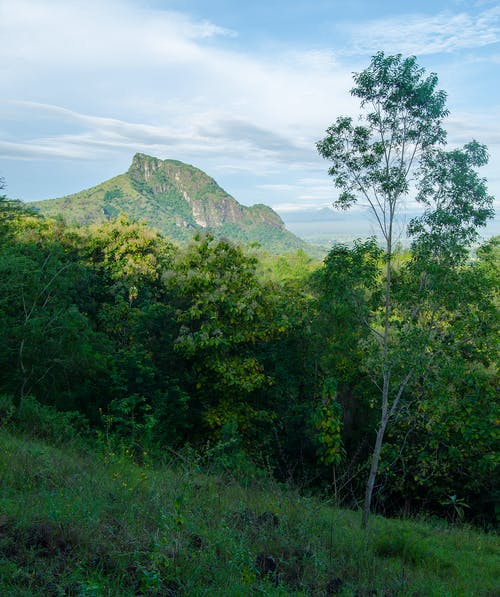 Free stock photo of beautiful landscape, green grass, green mountains, tree