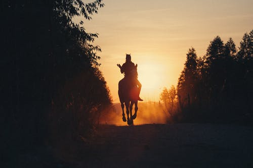Horse rider on road in countryside at sunset