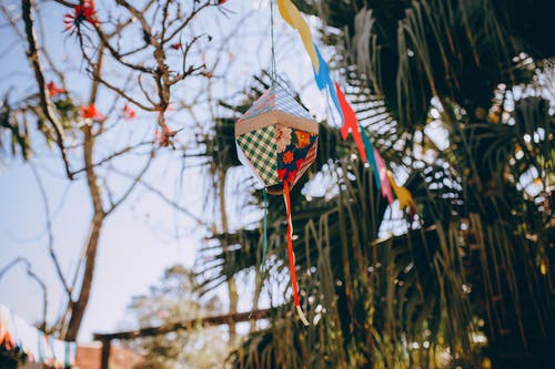 From below of colorful handmade paper lantern hanging on tree in sunny summer day