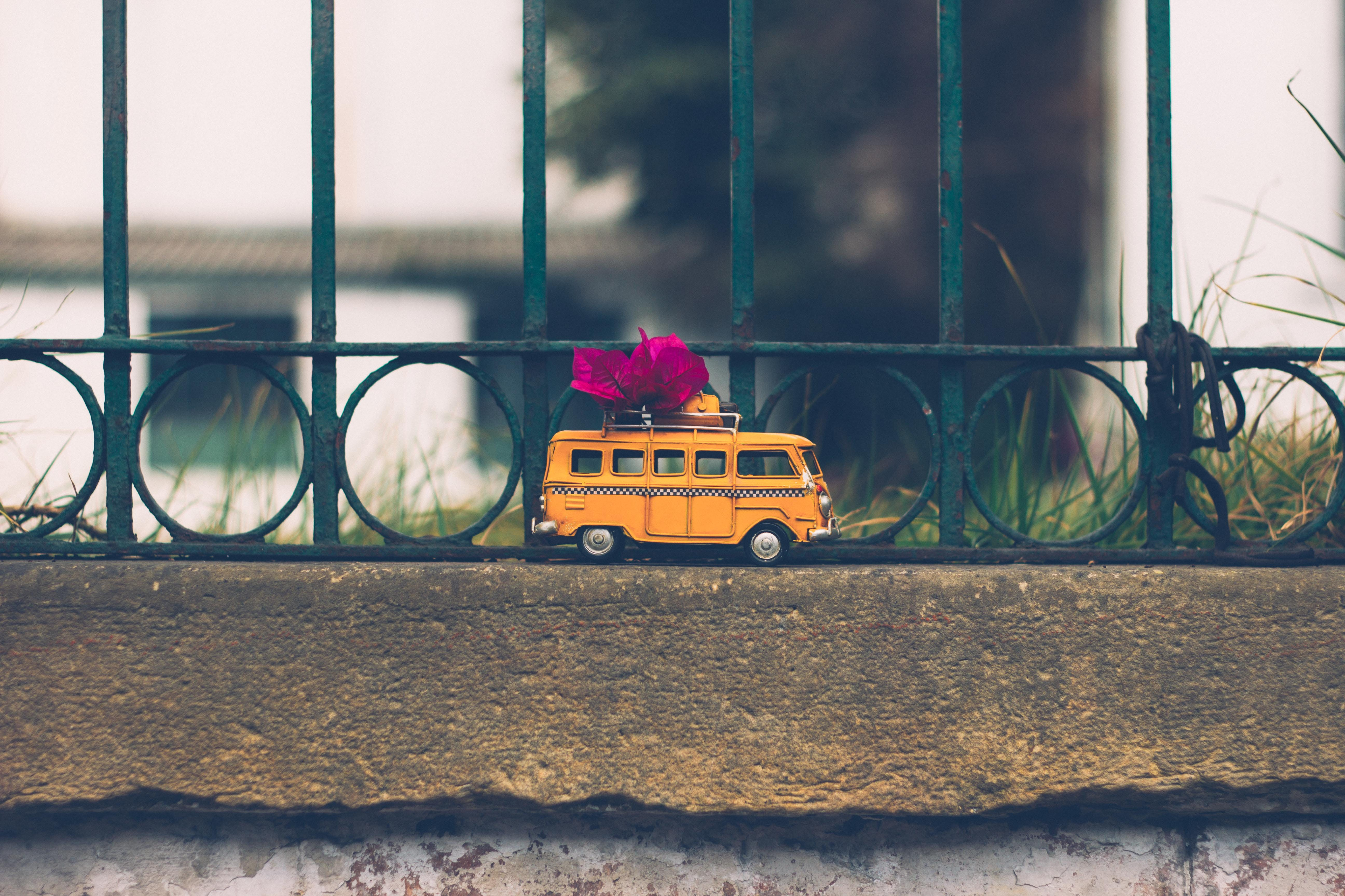 Free stock photo of flowers, green, taxi, vintage
